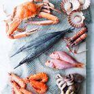 Les crustacés et fruits de mer sont des aliments sans sucre