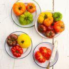 Les tomates anciennes : tomate noire de Crimée et green zebra