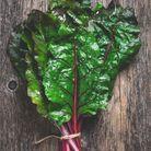 Fruits et légumes de saison en novembre : la Blette