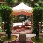 Le jardin des cygnes, un patio terrasse qui invite au voyage