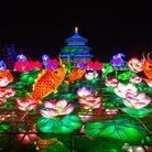 Les illuminations du Parc zoologique de Thoiry