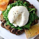 Salade de champignons et burrata