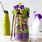 Salade bicolore aux fleurs en bocal