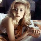 Catherine deneuve bellesdejour