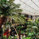 Barbican Conservatory, une oasis dans la ville
