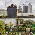 Culpeper Roof Garden, le « rooftop green »