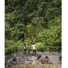 Le Lapa Rios Eco Lodge, au Costa Rica