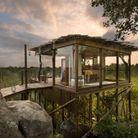Le Lion Sands Game Reserve, en Afrique du Sud