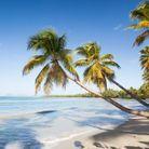 Où partir en janvier au soleil ?