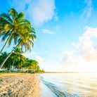 Paysage ensoleillé à la plage