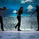 Plonger dans l'Ocean Odyssey