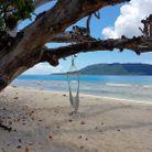 Se balancer sur un hamac sur une plage de sable blanc