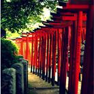 Le pont de Tsutenkyo, dans le Jardin Koishikawa Korakuen