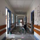 L'Hôpital des trois oursons