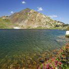 Vacances d'été à la montagne