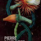 « Le Grand Vertige », de Pierre Ducrozet