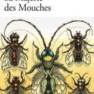 «Sa Majesté des Mouches», de William Golding