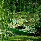 Se balader dans le jardin de Claude Monet