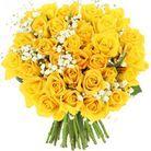 Rose Saint Valentin, Foliflora