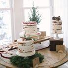 Mariage hiver gâteau