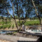 Le cadre idyllique du SPA & Wellness Center Coquillade au cœur du vignoble provençal
