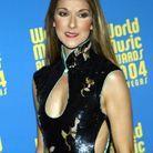 Céline Dion et sa robe au col mao