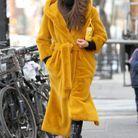 Irina Shayk en balade à New York