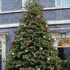 Le sapin de Noël de Downing Street à Londres