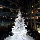 Le sapin de Noël de Kitte à Tokyo