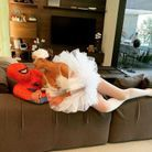 Chrissy Teigen en cygne et John Legend en Spiderman