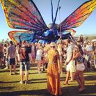 … En papillon coloré!
