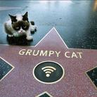 Son étoile sur le Walk of Fame