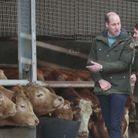Kate Middleton et William durant leur visite de la ferme
