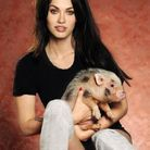 Megan Fox et son cochon Smalls