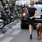 Sheba, le chien de Kylie Minogue