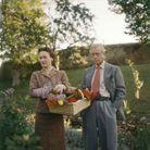 Édouard et Wallis Simpson en janvier 1955