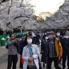 Elle attire chaque année des milliers de touristes