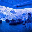 L'exposition Planète Océan